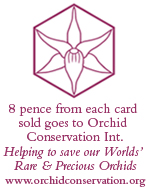 orchid conservation international