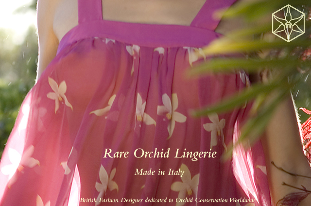 silk chiffon and silk velvet designer lingerie