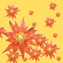 exotic_floral_greeting_cards